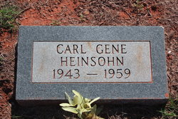 Carl Gene Heinsohn