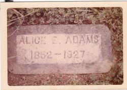 Aeljetha Alice <I>Veatch</I> Adams