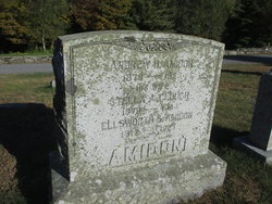 Stella Albert <I>Clough</I> Amidon