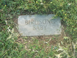 Infant Birdsong