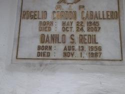 Danilo S Redil