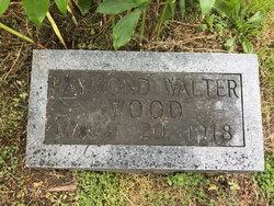 Raymond Walter Wood