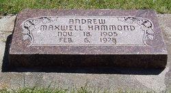 Andrew M Hammond
