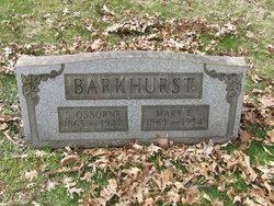 Mary Elizabeth <I>Graham</I> Barkhurst