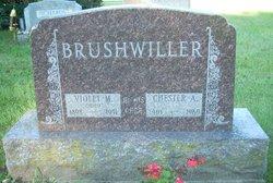 Violet Marguerite <I>Seney</I> Brushwiller