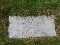 Albert P Figliolini