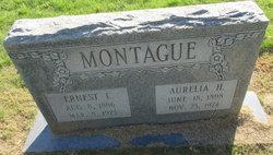 Ernest Lee Montague
