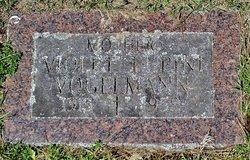 Violet <I>Lupini</I> Vogelmann