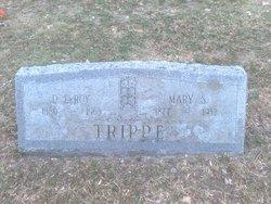 D LeRoy Trippe