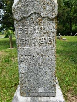 Burton A. Benedict