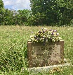 Eliza Ann <I>Keller</I> Brooks