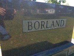 Gary H Borland