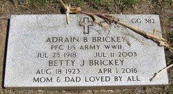 Betty J Brickey