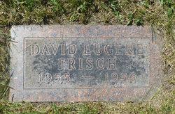 David Eugene Frisch