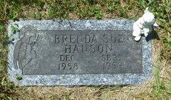 Brenda Sue Hanson
