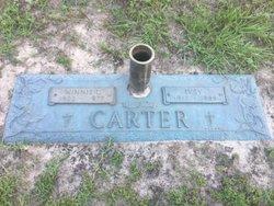 Winnie Virginia <I>Lane</I> Carter