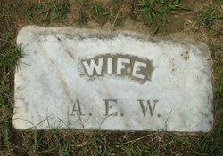 Annie Elizabeth <I>Root</I> Wentworth