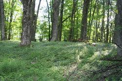 Michael Handy Farm Cemetery