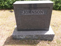 "Olga Walpuri ""Walpuri"" <I>Moilanen</I> Johnson"