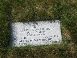Louis F D'Ambrosio