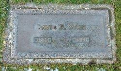 David R. Steik