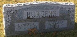 Ernest C. Burgess