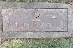 Florence Ann Johnson