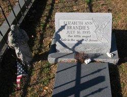 Elizabeth Ann Brandies