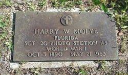 Harry Willis Moyle