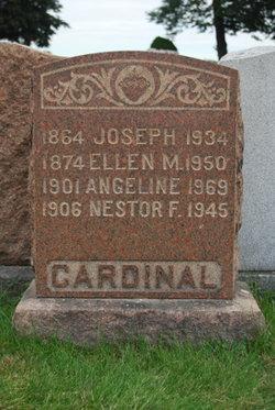 Ellen <I>Nestor</I> Cardinal