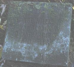 George Willis Morris, Jr