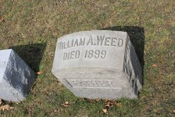 William A Weed