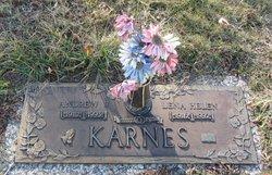 Andrew J. Karnes