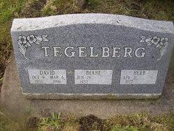 Diane M. <I>Walsh</I> Tegelberg