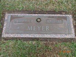 Dr William E Meyer