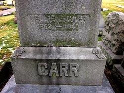 Nellie E. Carr