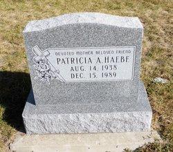 Patricia A Haebe