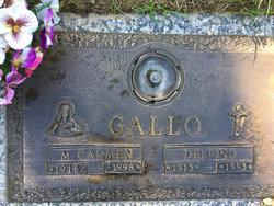 Delfino Gallo