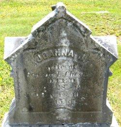 """Joanna J. """"Anna"""" <I>Stevens</I> Chesley"""