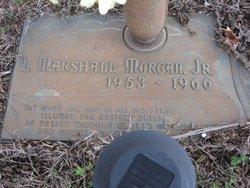 Lewis Marshall Morgan, Jr
