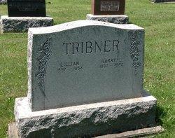 Harry L Tribner