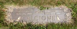 William E. Calcione, Sr