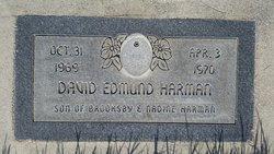 David Edmund Harman