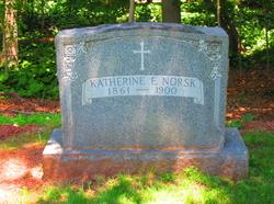 Katherine E Norsk