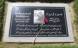 Mohammad T. Mokhberi