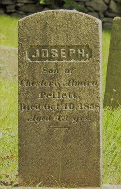 Joseph Pellett