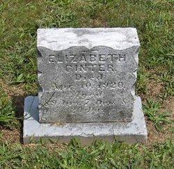 Elizabeth Ginter