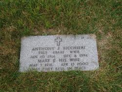 Anthony J Bicchieri