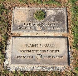 Elaine M Gale