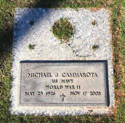 Michael J Cammarota